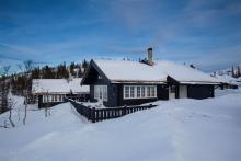 Fjelltun Hütte 11
