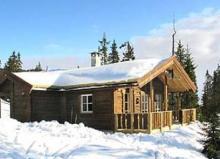 Hütte R1178A